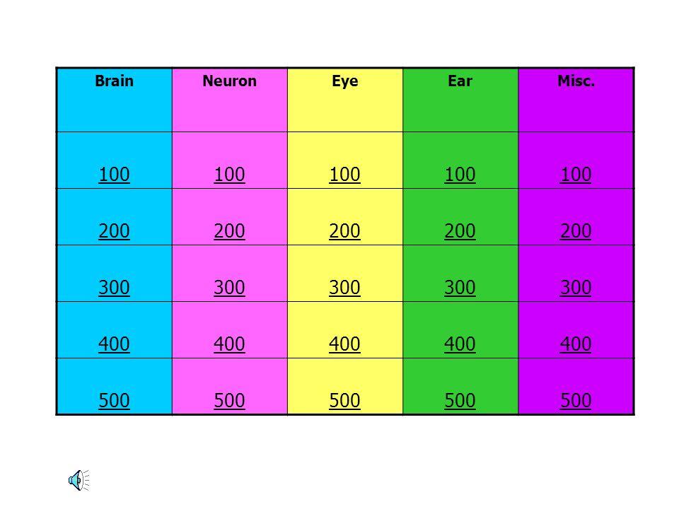 BrainNeuronEyeEarMisc. 100 200 300 400 500