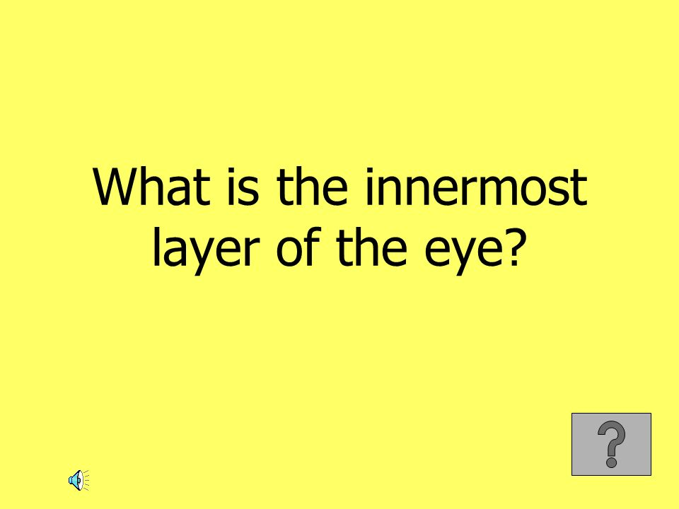 What is the innermost layer of the eye?