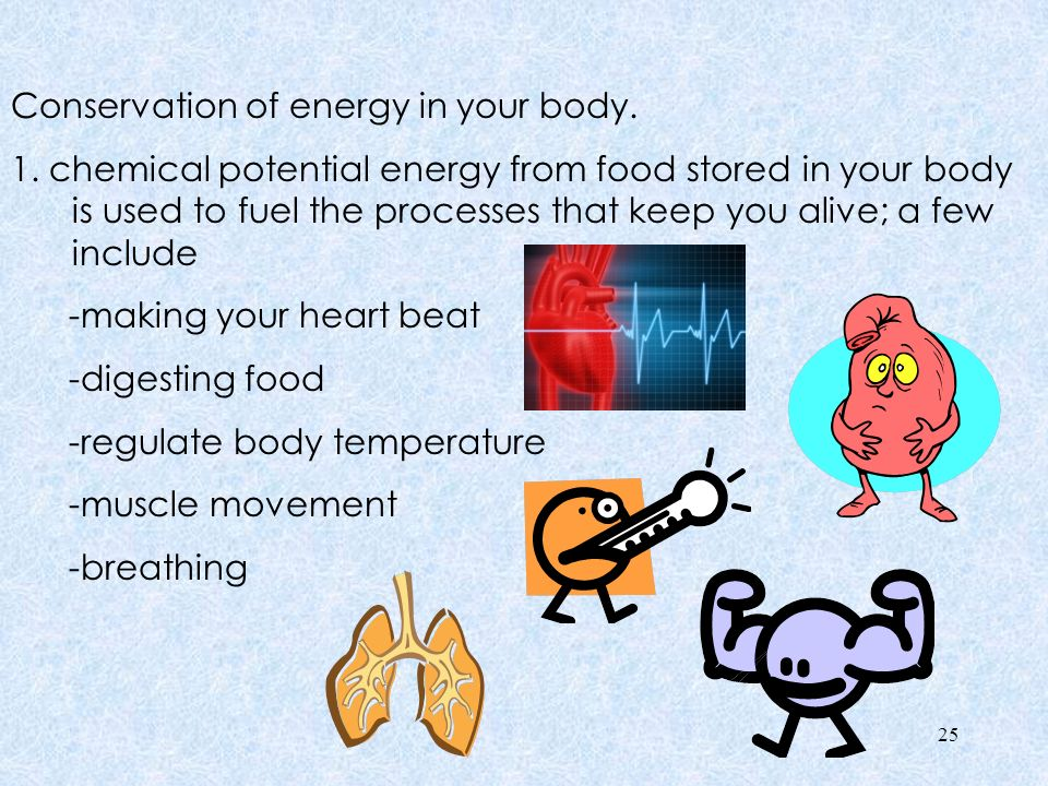 2.The food Calorie is used to measure how much energy you get from various foods.