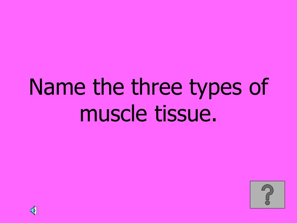 Name the three types of muscle tissue.