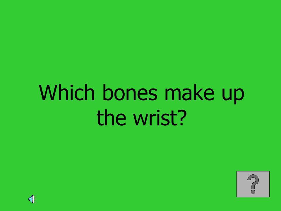 Which bones make up the wrist?