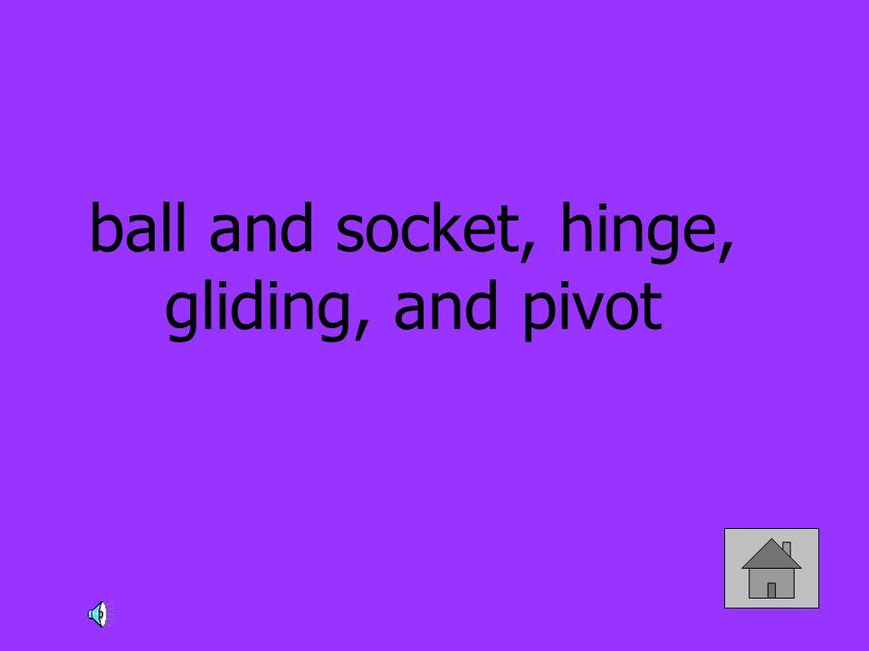 ball and socket, hinge, gliding, and pivot