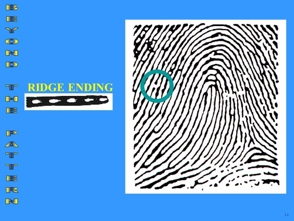 RIDGE ENDING 14