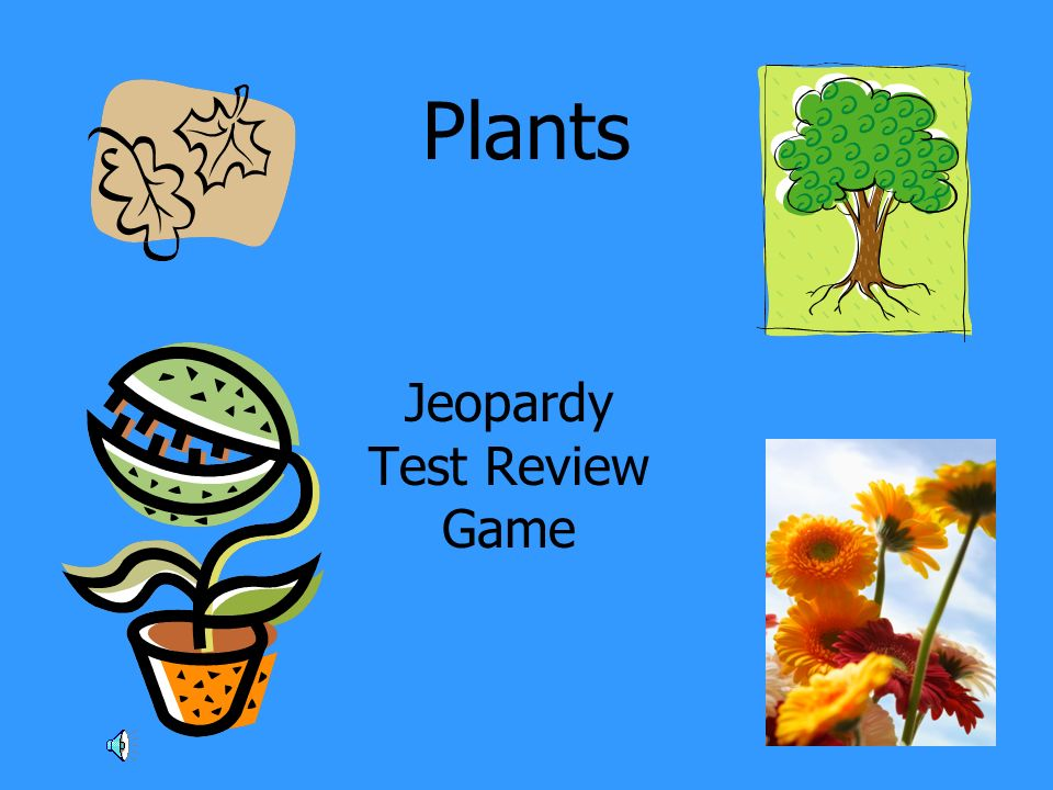 Plants Jeopardy Test Review Game