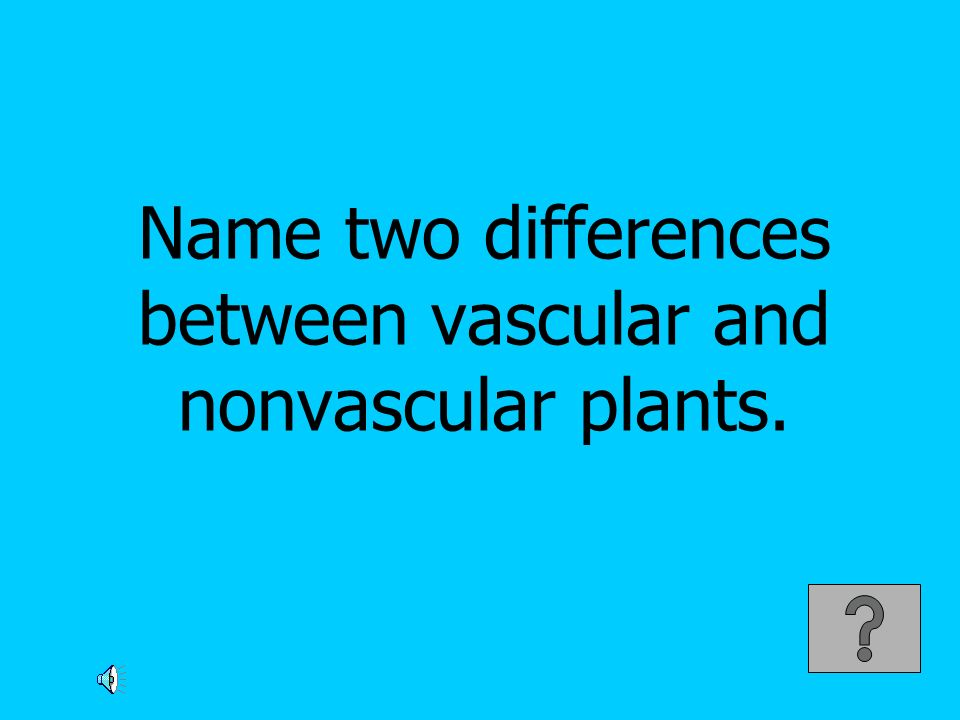 Name two differences between vascular and nonvascular plants.