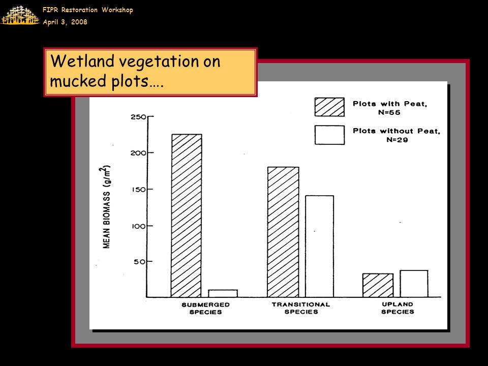 FIPR Restoration Workshop April 3, 2008 Wetland vegetation on mucked plots….
