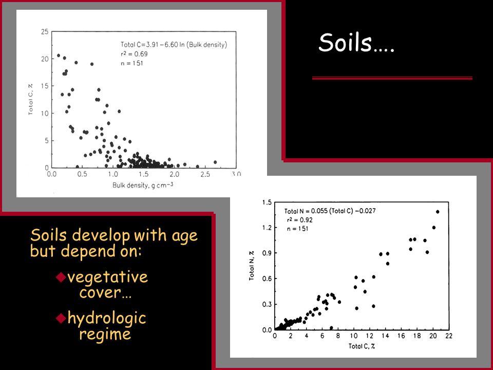FIPR Restoration Workshop April 3, 2008 Soils develop with age but depend on: vegetative cover… hydrologic regime Soils….