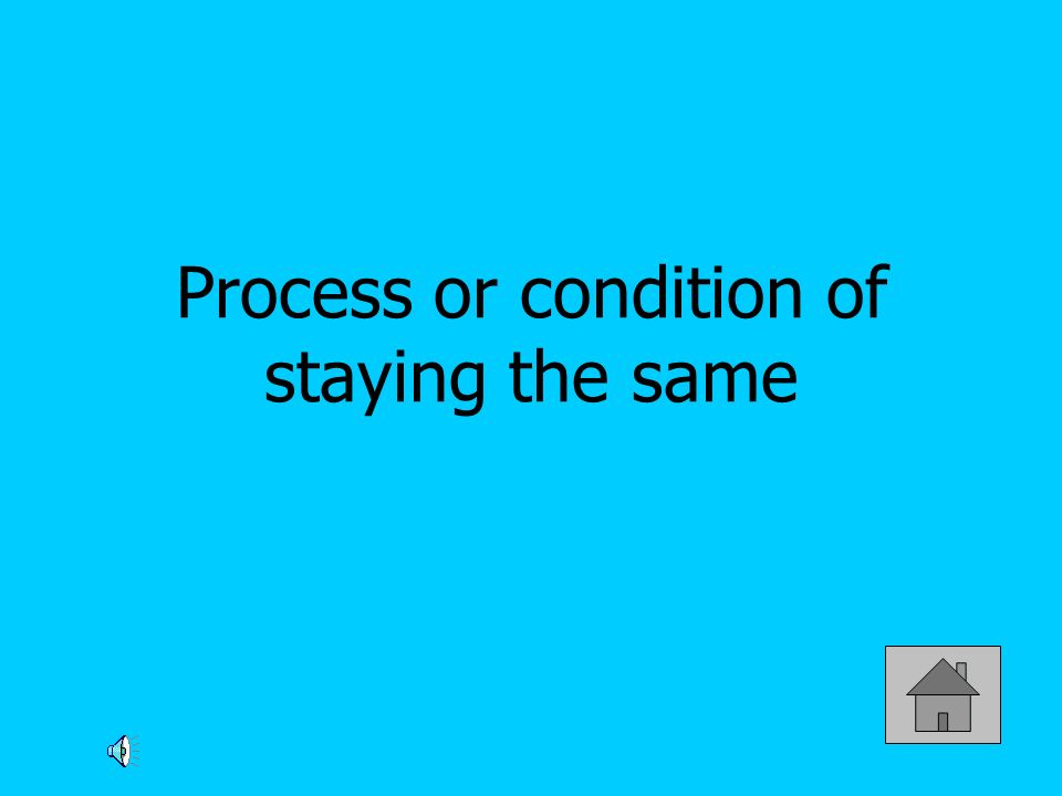 Process or condition of staying the same