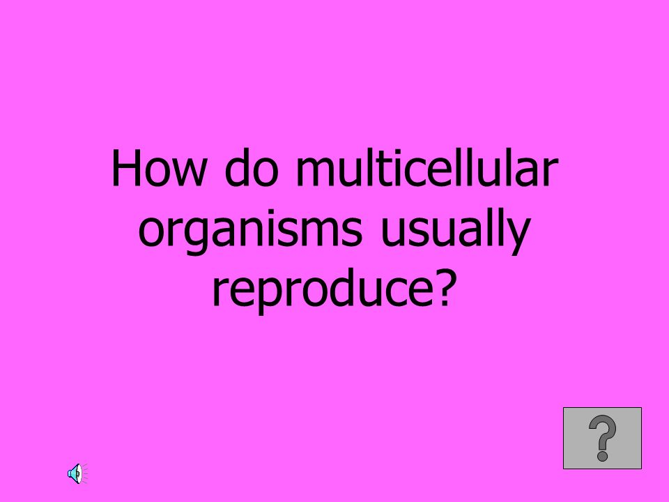 How do multicellular organisms usually reproduce?
