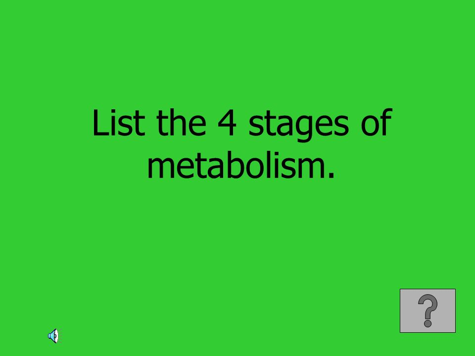 List the 4 stages of metabolism.