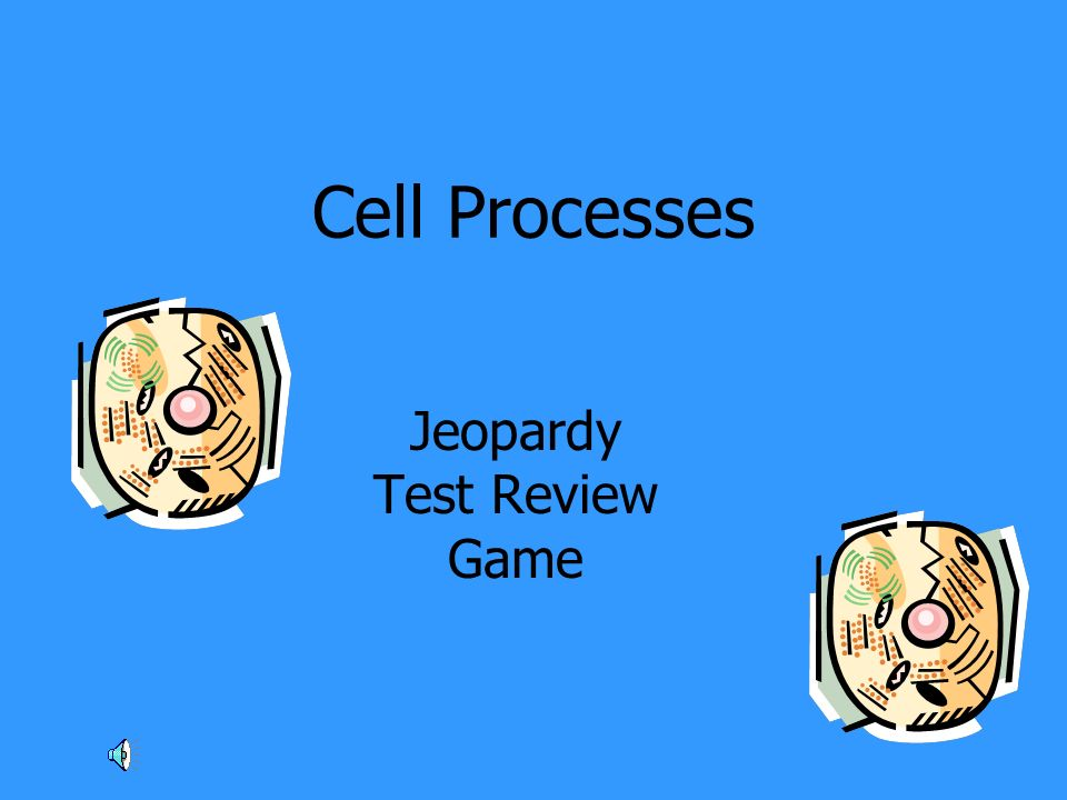 Cell Processes Jeopardy Test Review Game