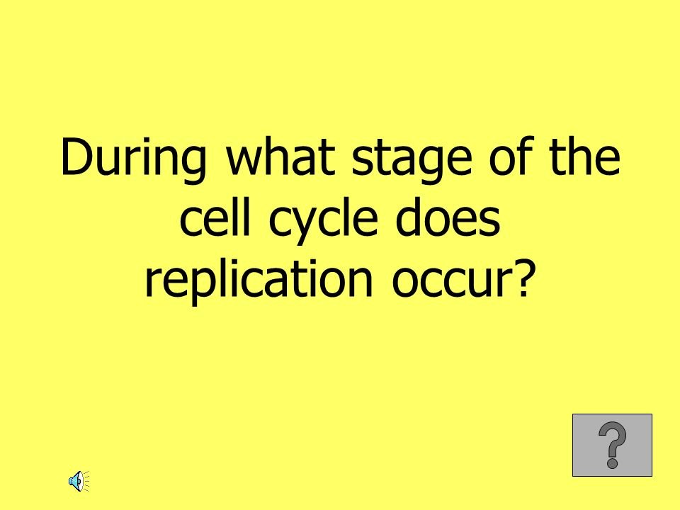 During what stage of the cell cycle does replication occur?