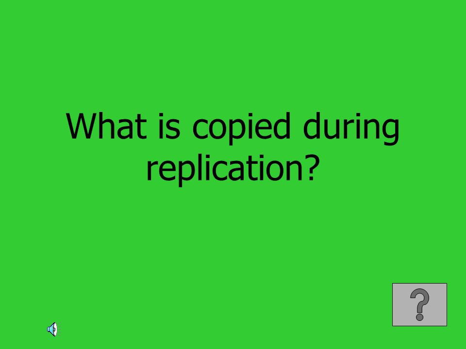 What is copied during replication?