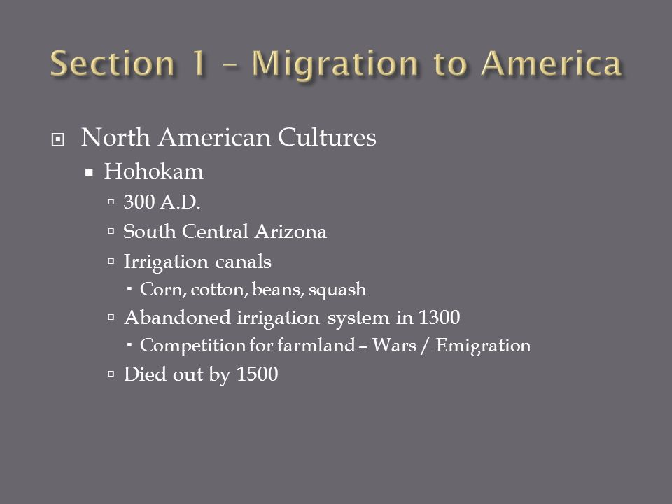 North American Cultures Hohokam 300 A.D. South Central Arizona Irrigation canals Corn, cotton, beans, squash Abandoned irrigation system in 1300 Compe