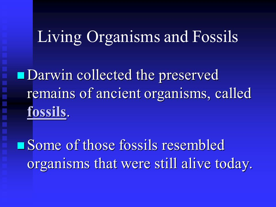 Living Organisms and Fossils Darwin collected the preserved remains of ancient organisms, called fossils. Darwin collected the preserved remains of an