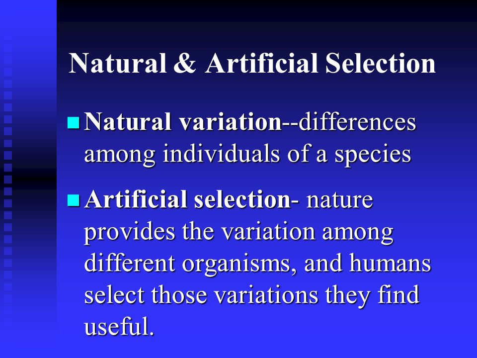 Natural & Artificial Selection Natural variation--differences among individuals of a species Natural variation--differences among individuals of a spe