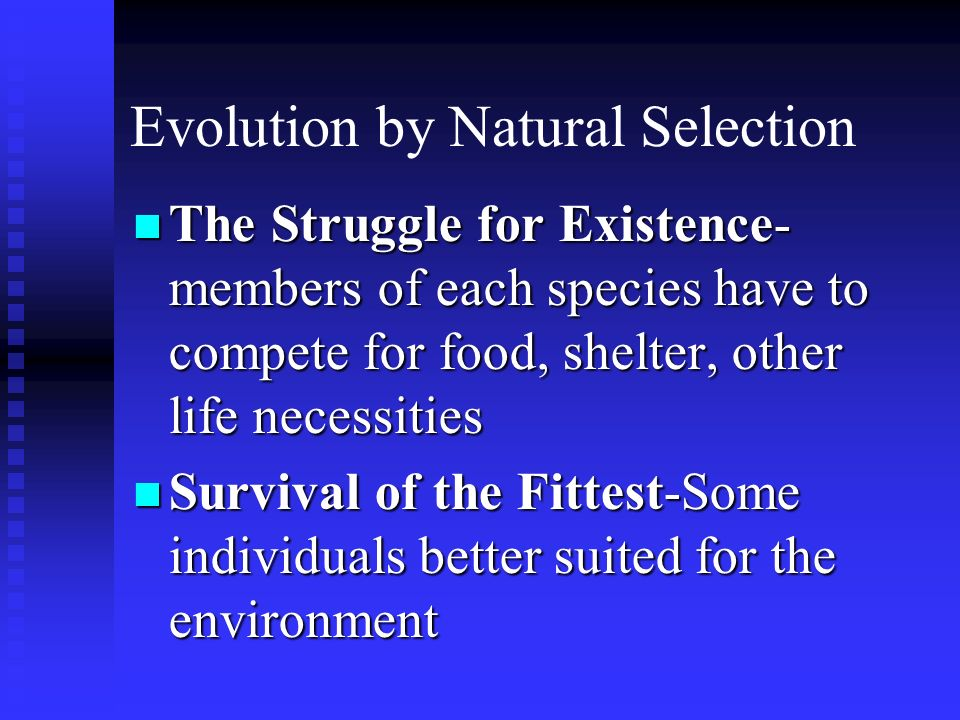 Evolution by Natural Selection The Struggle for Existence- members of each species have to compete for food, shelter, other life necessities The Strug