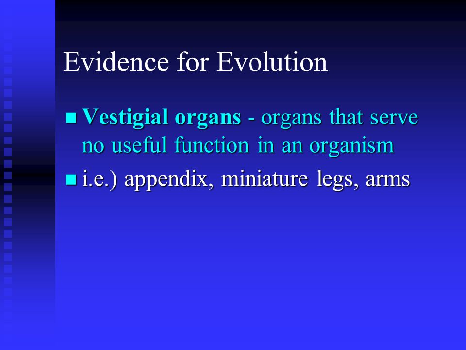 Evidence for Evolution Vestigial organs - organs that serve no useful function in an organism Vestigial organs - organs that serve no useful function
