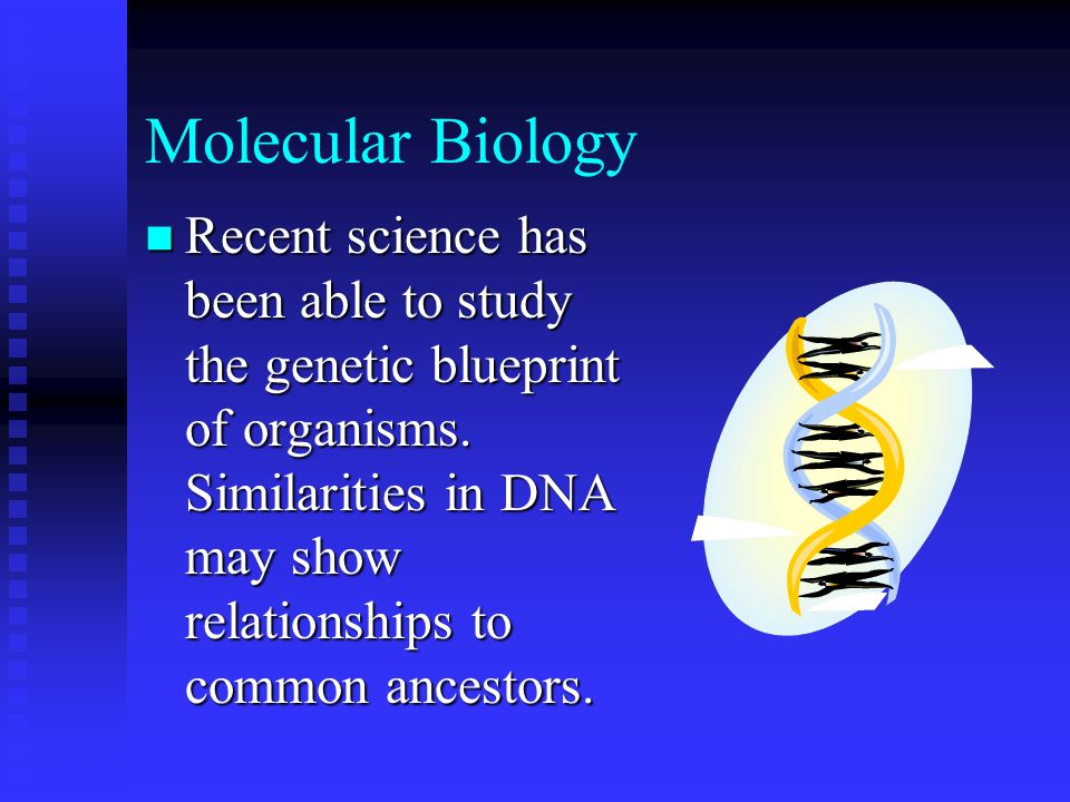 Molecular Biology Recent science has been able to study the genetic blueprint of organisms. Similarities in DNA may show relationships to common ances