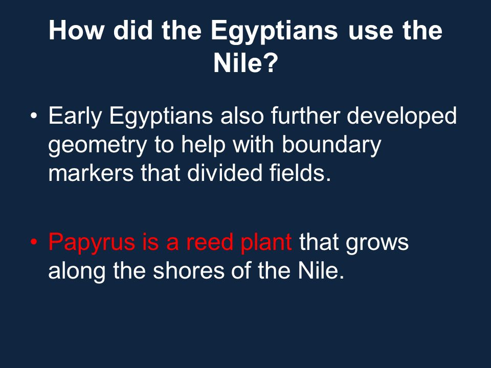 Early Egyptians also further developed geometry to help with boundary markers that divided fields. Papyrus is a reed plant that grows along the shores