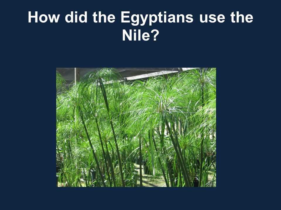 How did the Egyptians use the Nile?