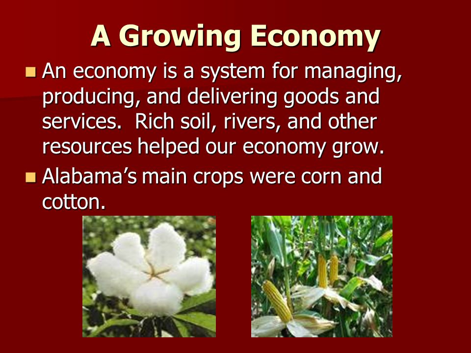 A Growing Economy An economy is a system for managing, producing, and delivering goods and services.