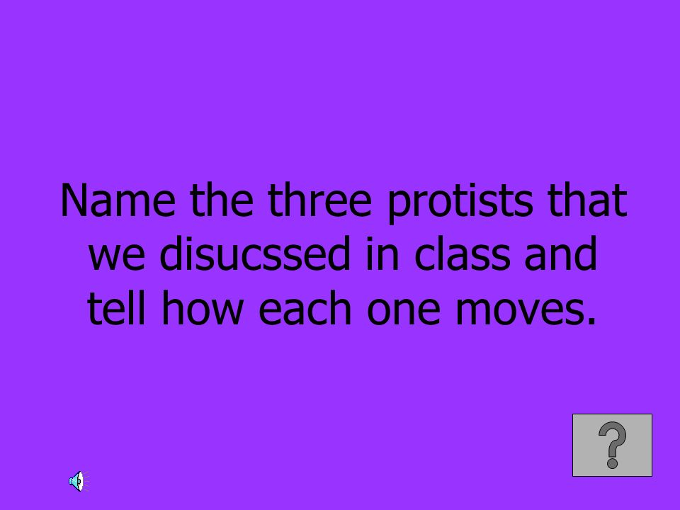 Name the three protists that we disucssed in class and tell how each one moves.