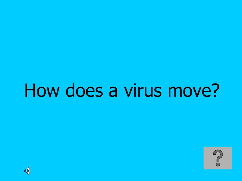How does a virus move?