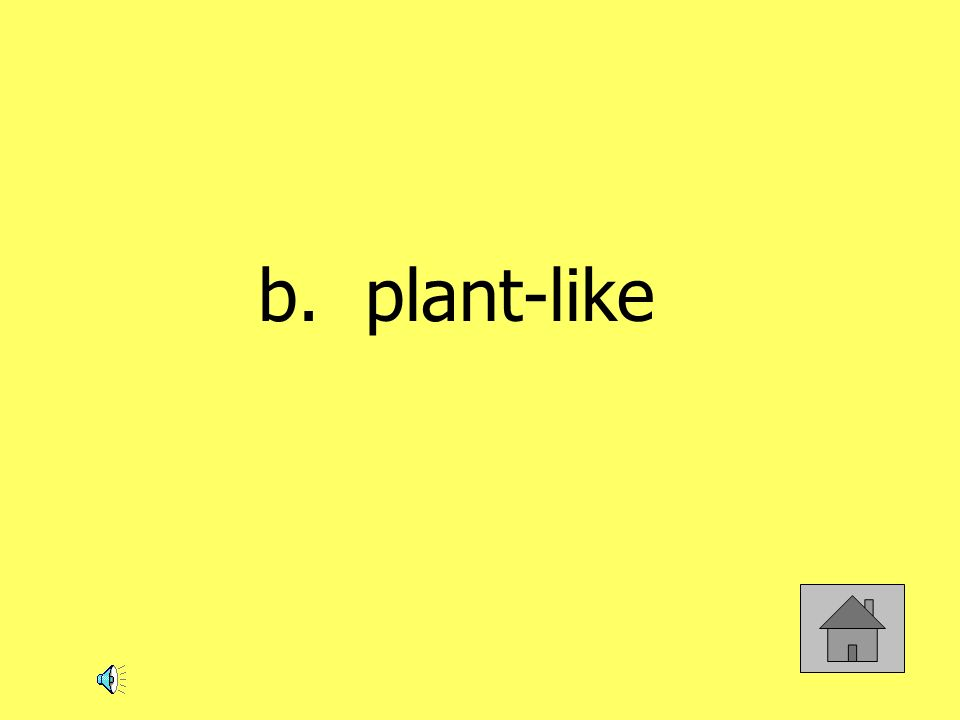 b. plant-like