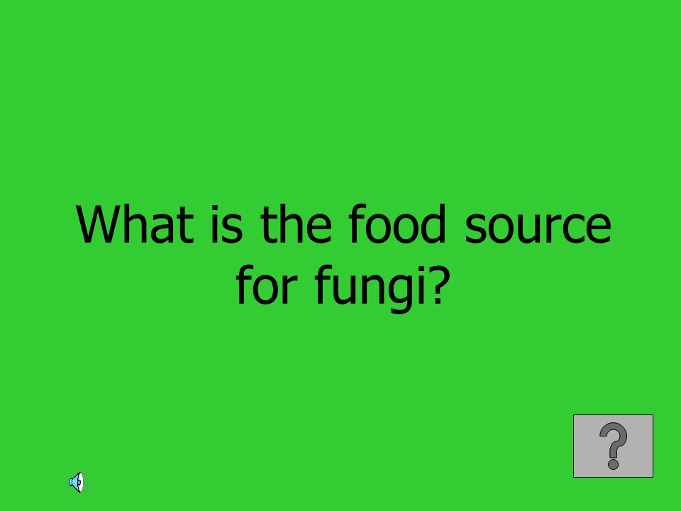 What is the food source for fungi?