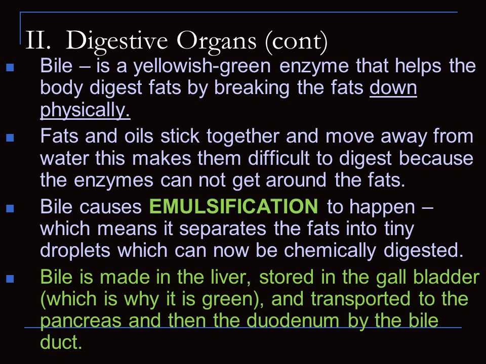 II. Digestive Organs (cont) Bile – is a yellowish-green enzyme that helps the body digest fats by breaking the fats down physically. Fats and oils sti