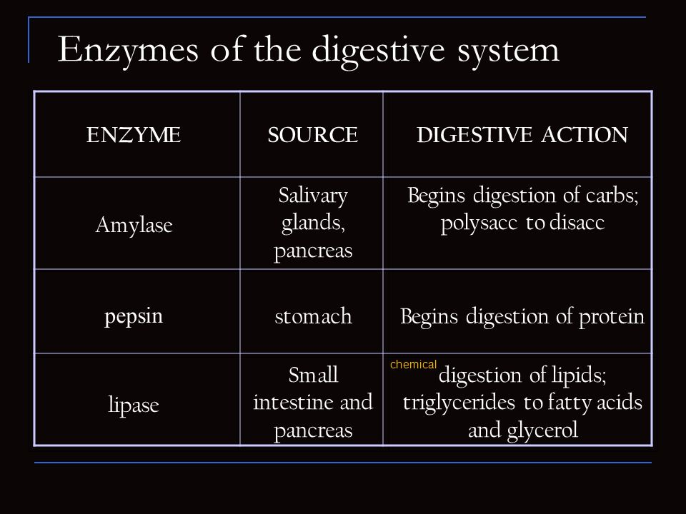 Enzymes of the digestive system ENZYMESOURCEDIGESTIVE ACTION Amylase Salivary glands, pancreas Begins digestion of carbs; polysacc to disacc pepsin st