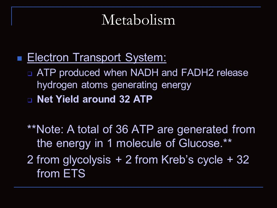 Metabolism Electron Transport System: ATP produced when NADH and FADH2 release hydrogen atoms generating energy Net Yield around 32 ATP **Note: A tota