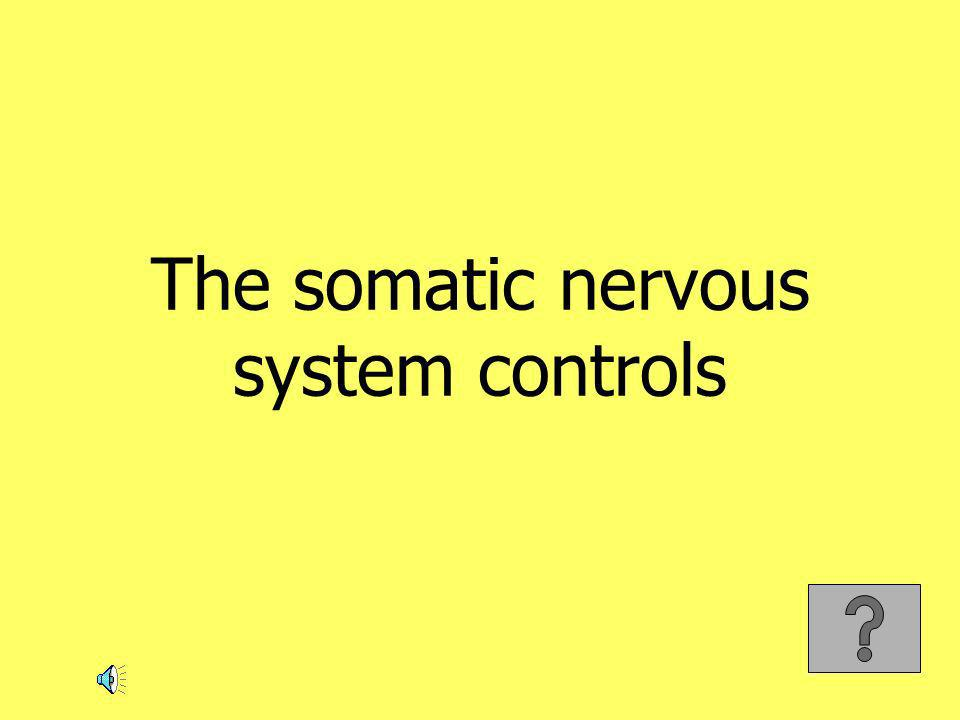 The somatic nervous system controls