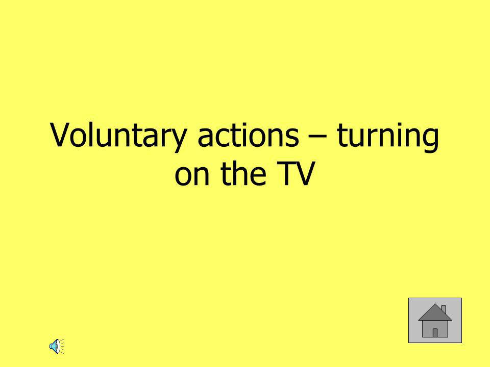 Voluntary actions – turning on the TV