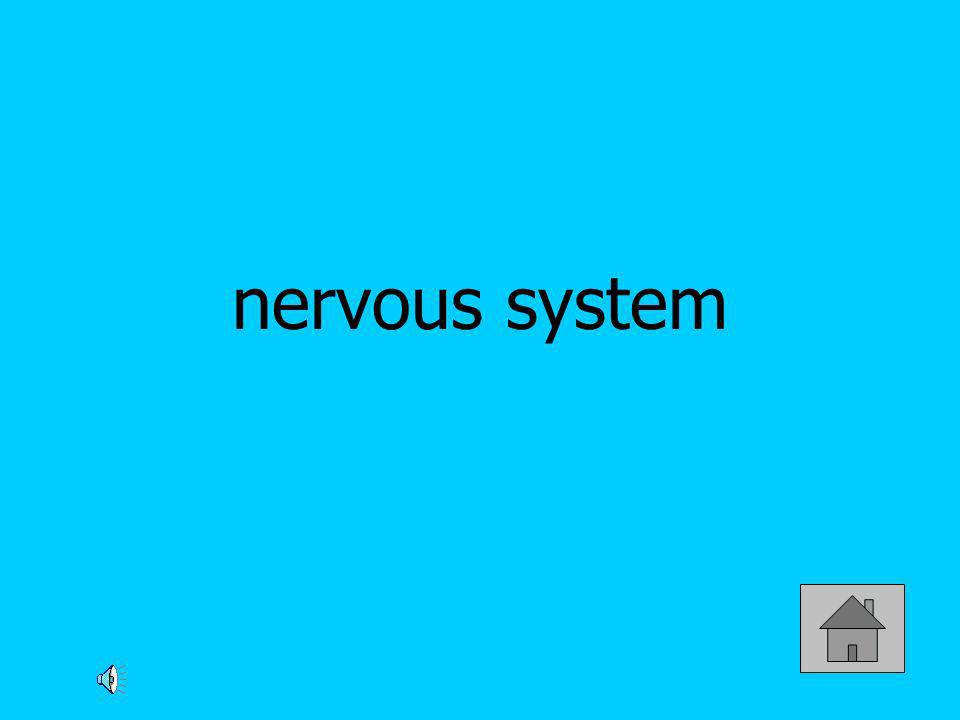 Which gland communicates with the hypothalamus to control many body activities, including growth