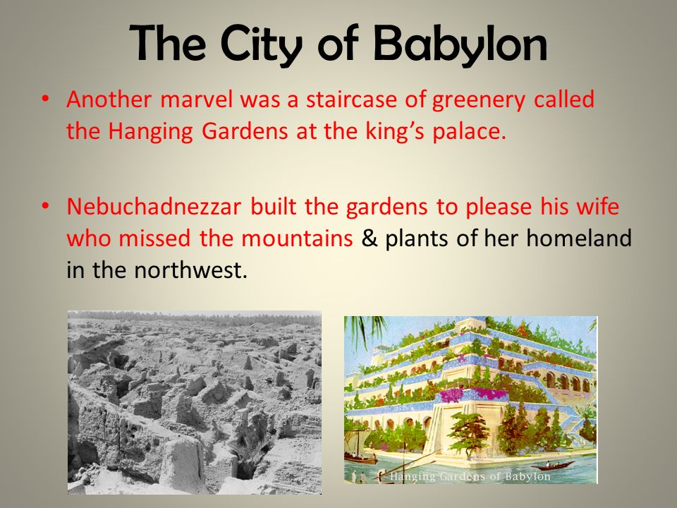 The City of Babylon Another marvel was a staircase of greenery called the Hanging Gardens at the kings palace. Nebuchadnezzar built the gardens to ple