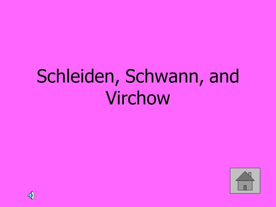 Schleiden, Schwann, and Virchow