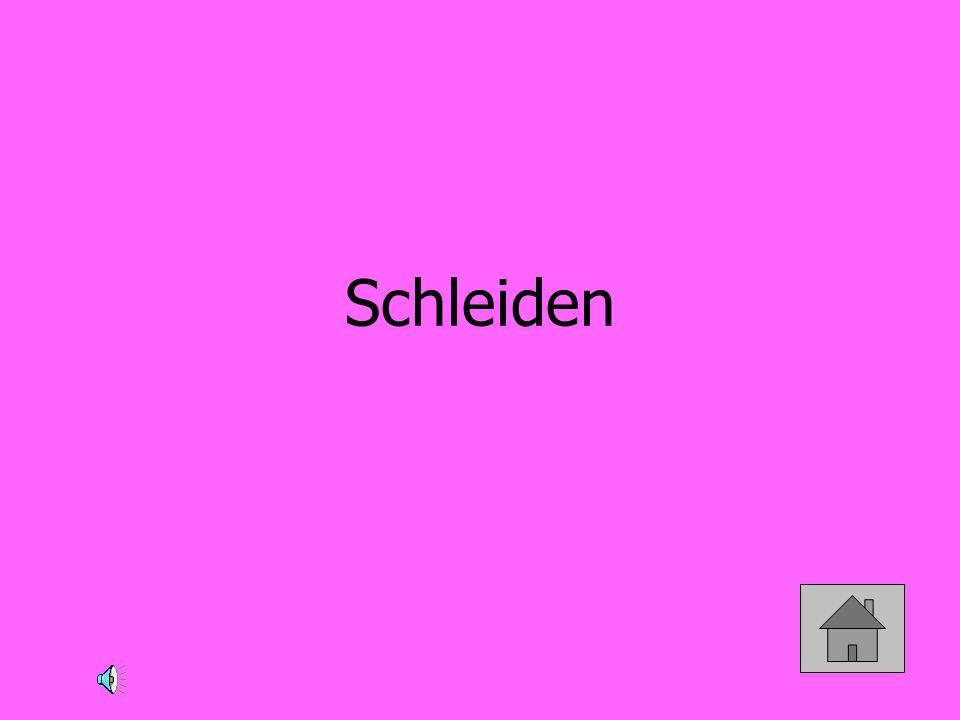 Schleiden