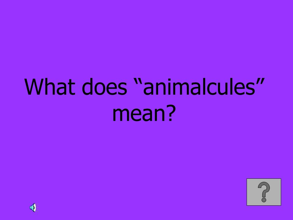 What does animalcules mean?