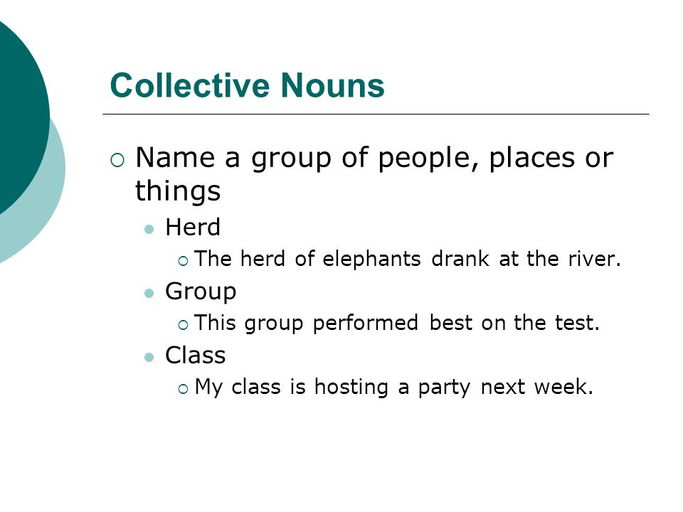 Collective Nouns Name a group of people, places or things Herd The herd of elephants drank at the river. Group This group performed best on the test.