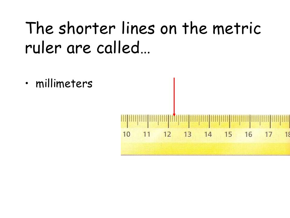 The longer lines on the metric ruler are called… centimeters