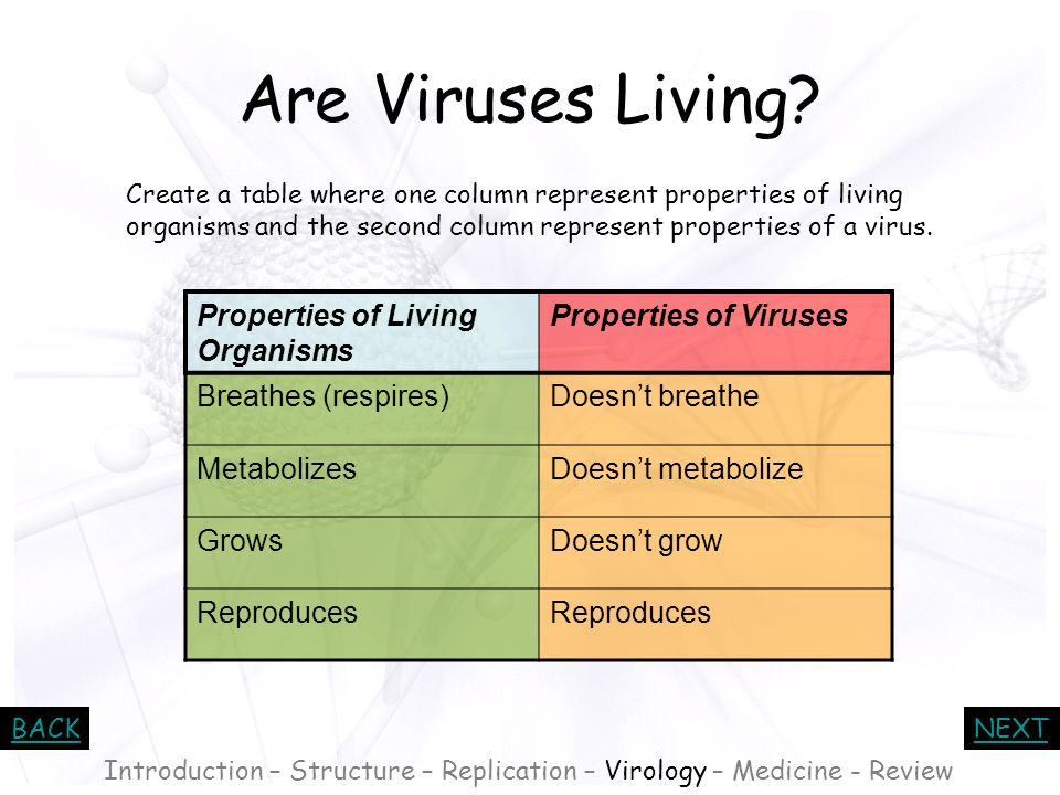 BACKNEXT The concept of a virus as an organism challenges the way we define life: *Viruses do not breathe. *Viruses do not metabolize. *Viruses do not