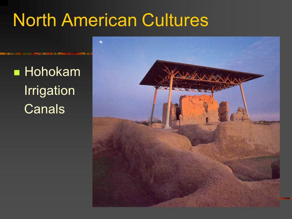 North American Cultures Hohokam Irrigation Canals
