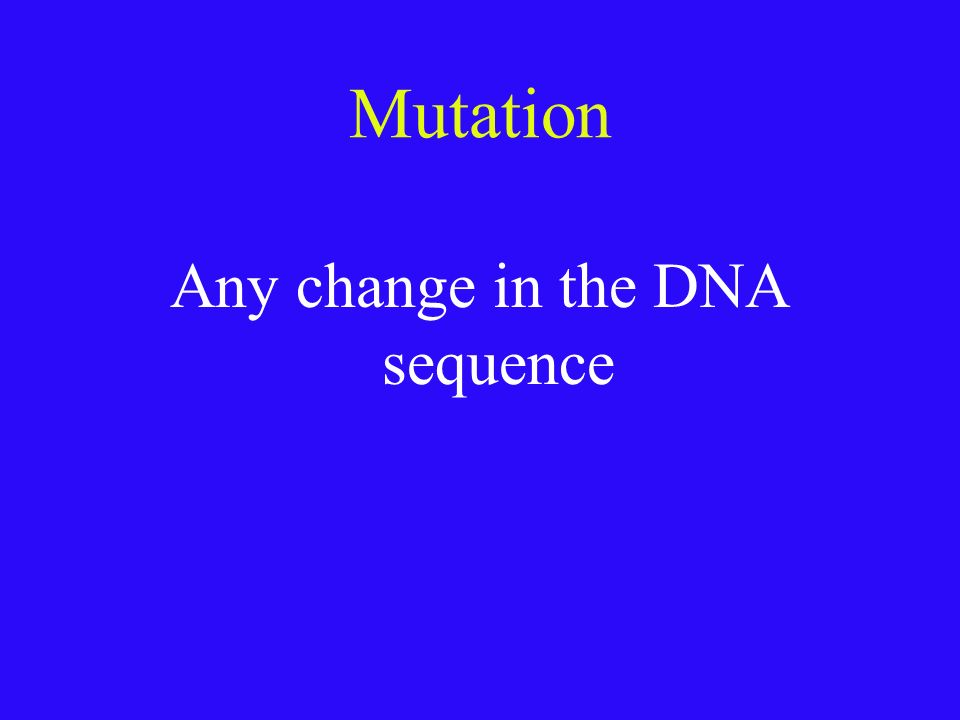 Review of Translation 1.mRNA leaves the nucleus and goes to the ribosome 2.mRNA has the code for making the protein 3.tRNA brings the correct amino ac