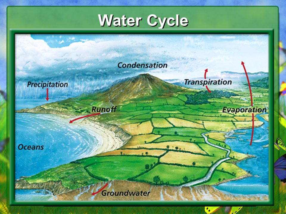 55 Water Cycle