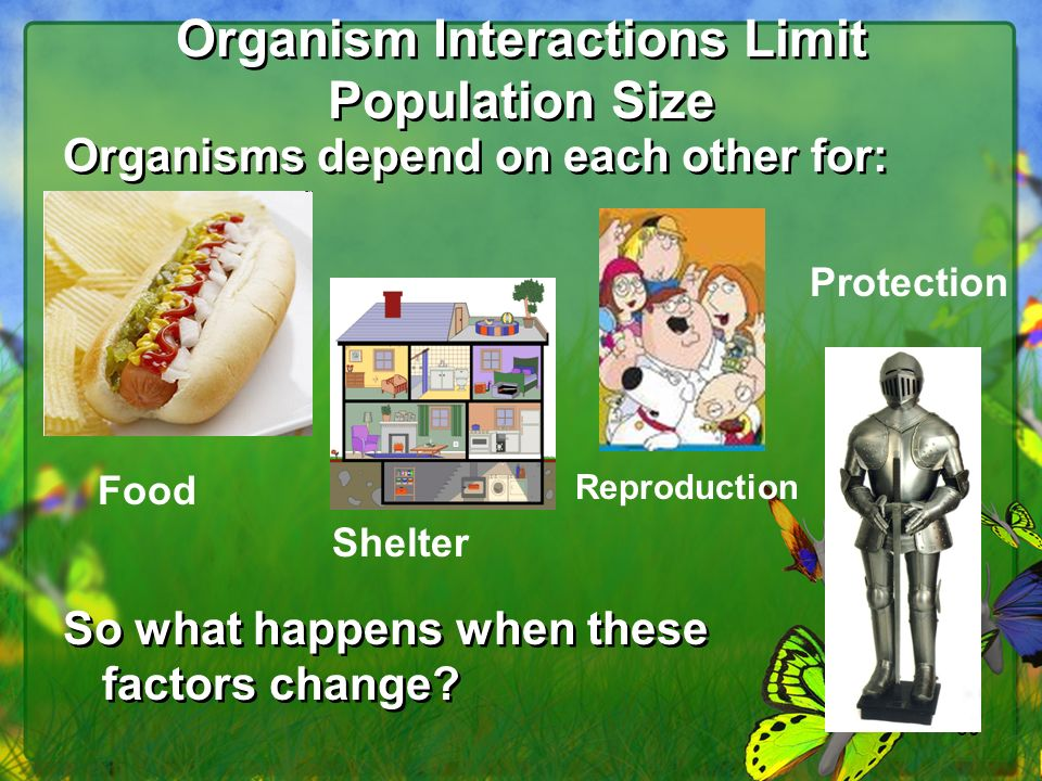 60 Organism Interactions Limit Population Size Organisms depend on each other for: So what happens when these factors change.