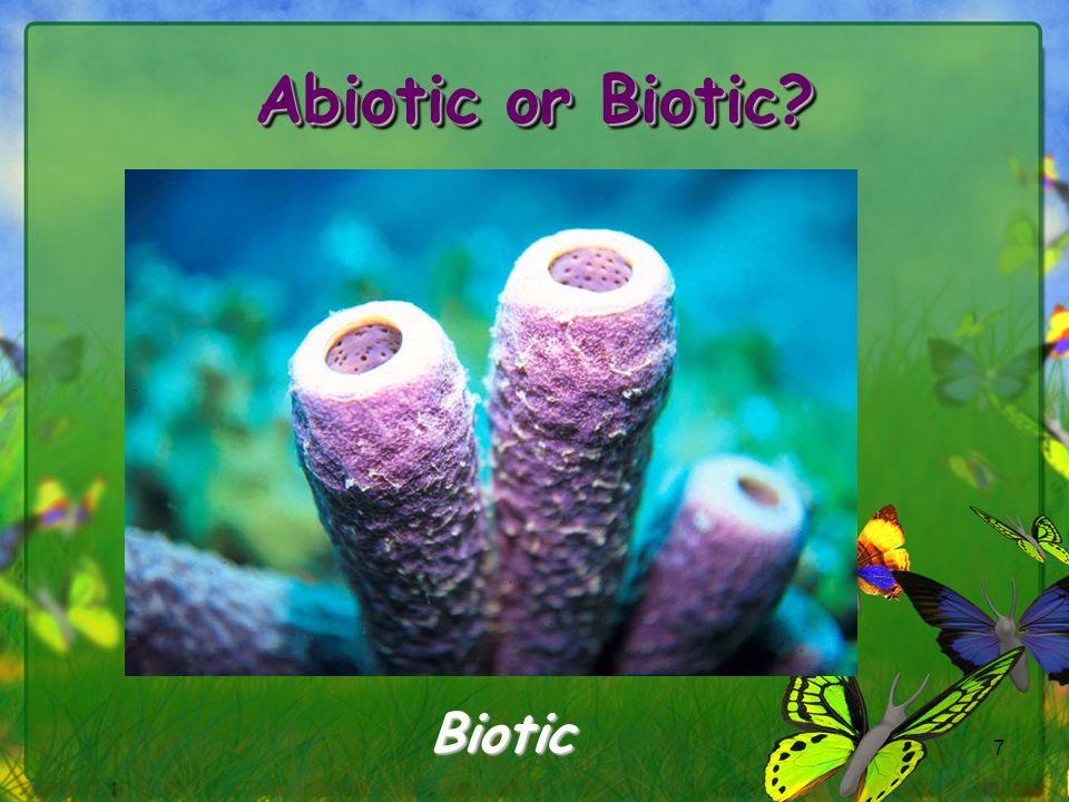 7 Biotic