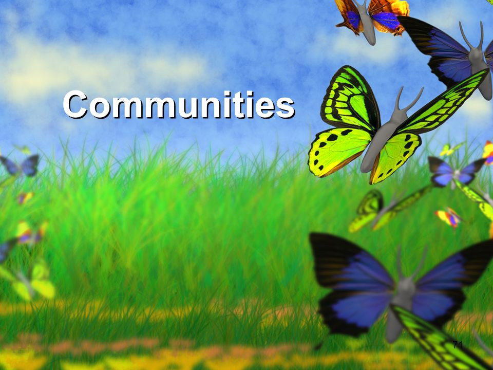 71 Communities