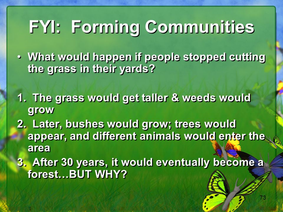 73 FYI: Forming Communities What would happen if people stopped cutting the grass in their yards.